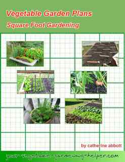 Layout for small vegetable garden using the square foot