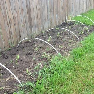 new garden bed - Vegetable Garden Soil